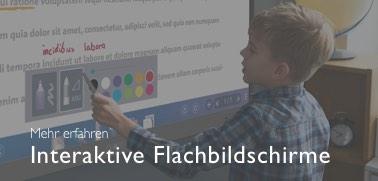 Interaktive Flachbildschirme